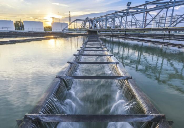 Очистные сооружения в стране работают настолько хорошо, что в водостоках даже плавают разные виды рыб / Фото: forpost-sz.ru