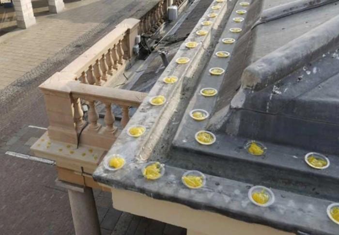 Оптический гель выпускается в тубе и наносится на балконы, карнизы и другие элементы здания / Фото: f.allegroimg.com