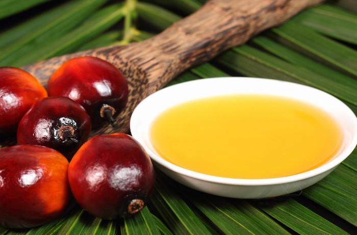 Пальмовое масло улучшает вкус молока и продлевает срок годности / Фото: motti.ru