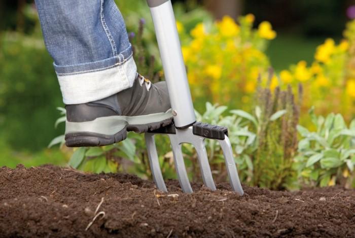 Вилы работают более аккуратно и не повреждают корни сорняков, спровоцировав рост свежей травы / Фото: navseruki.guru