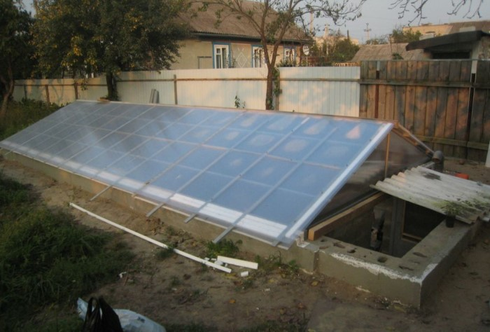 Крыша может быть двускатной, арочной или полукруглой / Фото: teplica-exp.ru