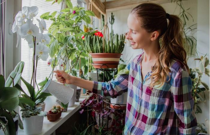 Изучите правила полива для конкретных цветов и обращайте внимание на внешний вид домашних «жителей» / Фото: rosefast.ru