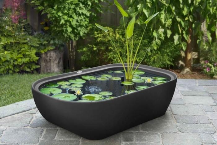 Подберите глубокую емкость любого размера, начиная от вазона, ведра и заканчивая мини-ванной или огромными чашами / Фото: blog.postel-deluxe.ru