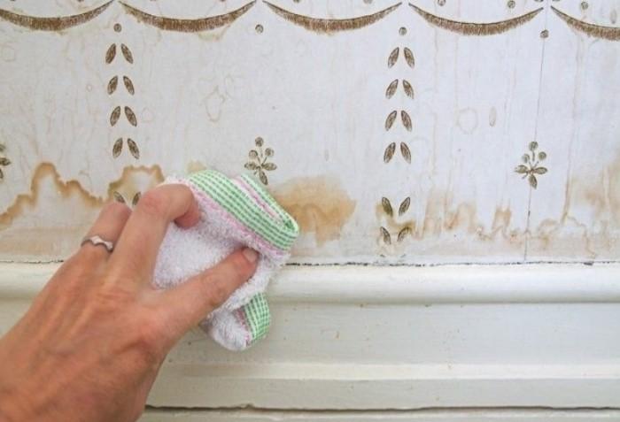 Перед использованием очистителя протестируйте его на незаметном участке / Фото: i.mycdn.me