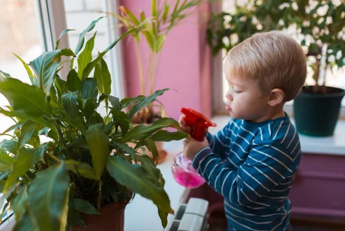 Маленькие дети и домашние животные обожают пробовать все на зуб