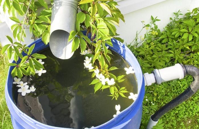 Лучше всего использовать баки из пищевых материалов или металлические резервуары / Фото: pochtidoma.ru