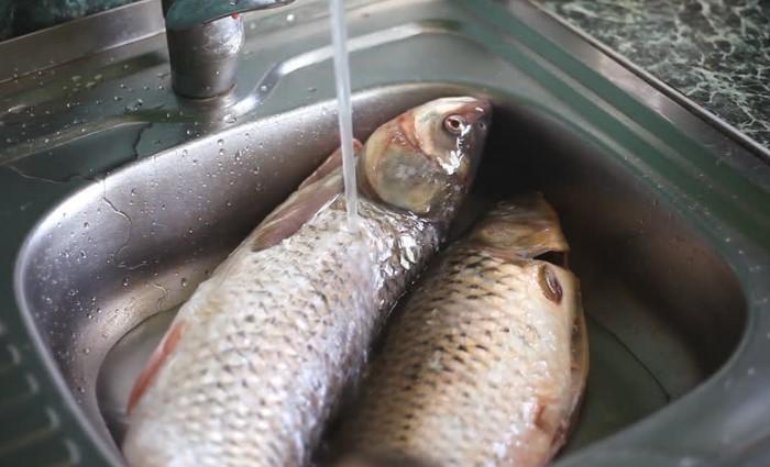 Если чистить рыбу в воде, чешуйки не будут разлетаться во все стороны / Фото: 365news.biz