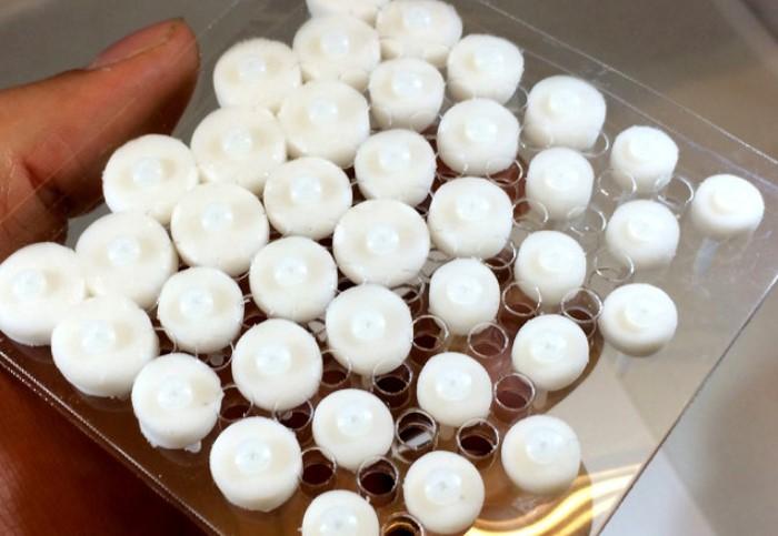 SABER представляет собой мембрану, состоящую из мельчайших чувствительных ячеек и клапанов / Фото: kienviet.net