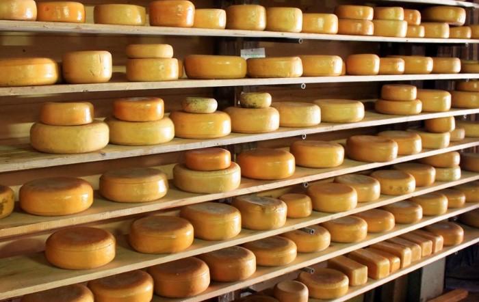 Производители могут искусственно ускорить процесс созревания сыра / Фото: zviestki.com