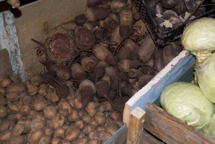 Идеальный вариант - закладывать свеклу поверх картофеля / Фото: sdelai-lestnicu.ru