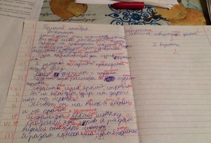 Поля в тетрадях вовсе не для учительских пометок или рисунков / Фото: k-istine.ru