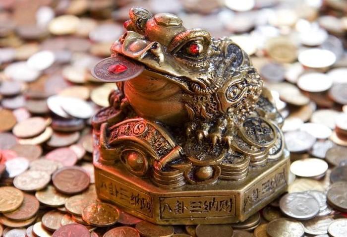 Лягушка превратилась в денежный талисман и подгребает финансы в дом, где за ней заботливо ухаживают / Фото: img.joinfo.com