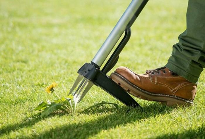 Садовый инструмент легко удаляет разные виды сорняков без лишних нагибаний, выкапываний и химикатов / Фото: cdn.alza.cz