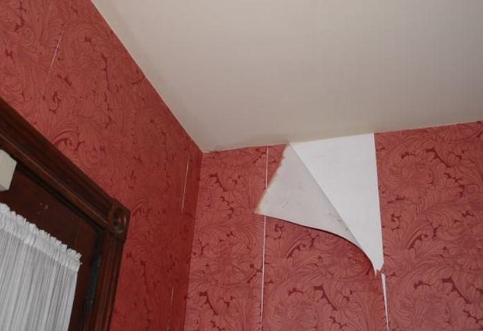 Отклеившийся уголок можно приклеить на ПВА, обойной средство или даже клейстер / Фото: всегда-кстатинн.com