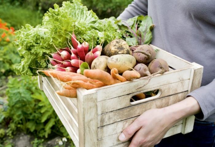 Может показаться, что все продукты целые и невредимые / Фото: narod.hozvo.ru