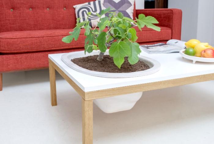 Благодаря такому приему растения будут находиться на одном уровне со столешницей / Фото: theinteriordesign.it