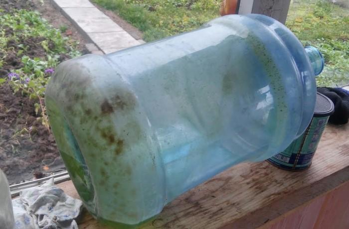 На стенках бутылей оседают водоросли, которые обожают влажность и свет