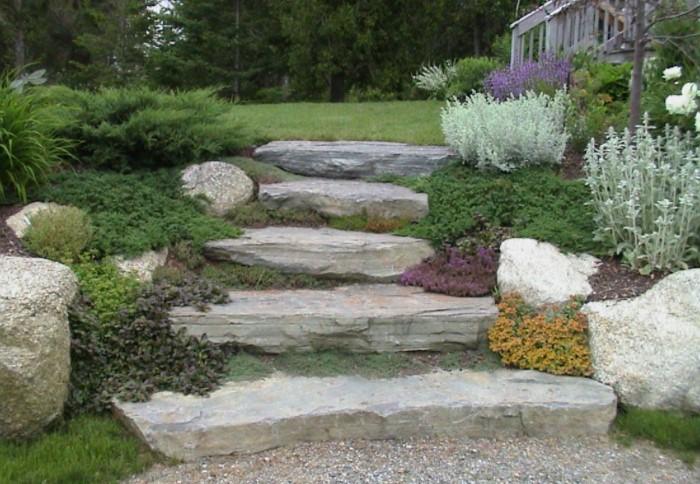 Можно разместить растения на расстоянии, а большом или маленьком - решать вам / Фото: i.pinimg.com