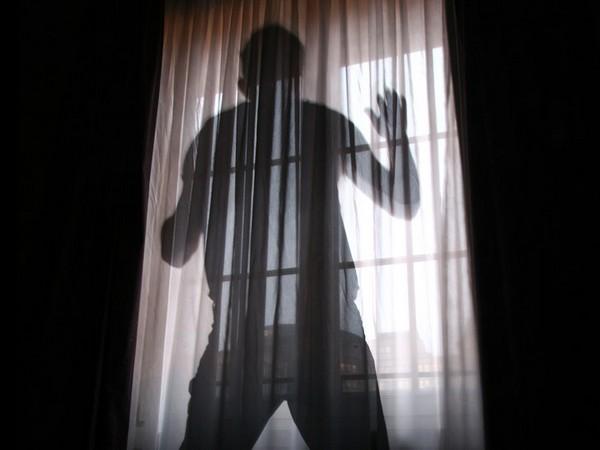 Smart Curtains – первые в мире умные шторы