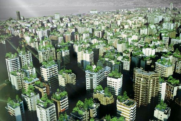 Beirut Wonder Forest  - висячие сады Бейрута
