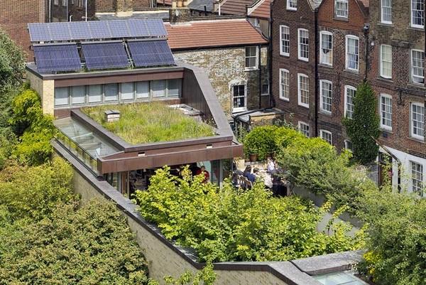 The Muse – экологичный дом с парком на крыше