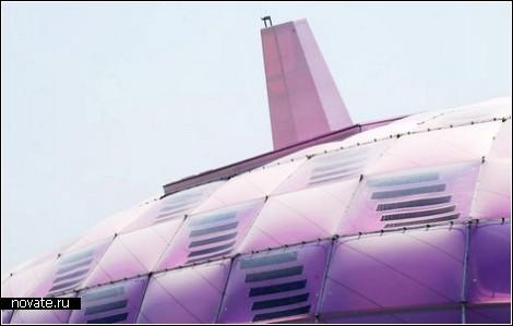 Пурпурный шелкопряд – визитка Японии