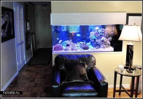 Элитный аквариум за 200 тысяч долларов