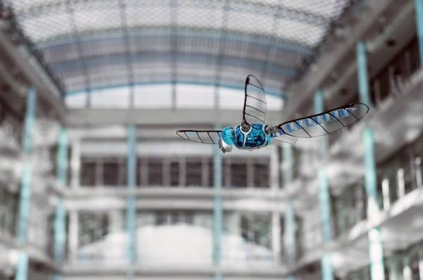 BionicOpter � �������� �����-�������� �� Festo