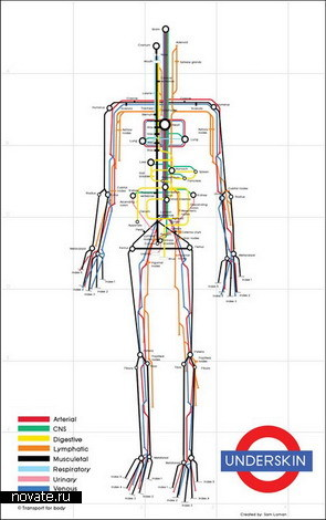 Underskin Body Map – схема линий человеческого тела