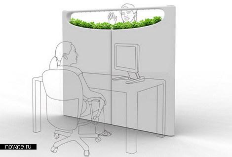 Зеленые стенки для офиса