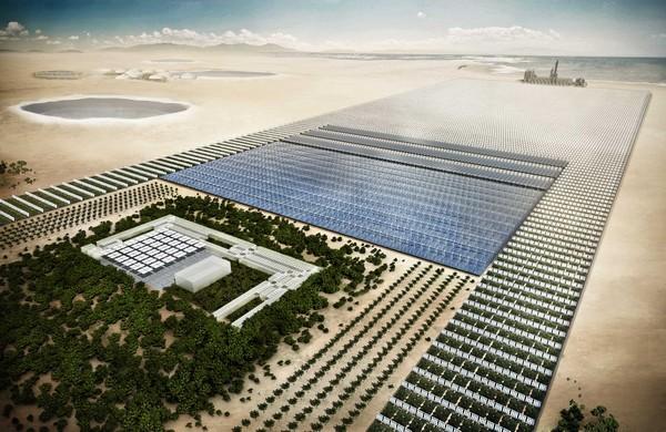Sahara Forest Project – и в пустыне будут яблони цвести!