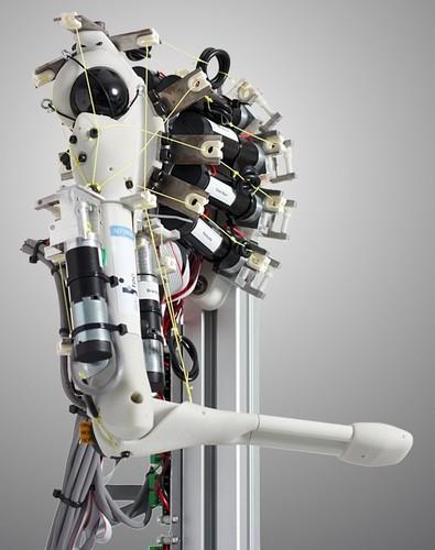 Eccerobot – робот с человеческой мимикой, мускулатурой и рефлексами