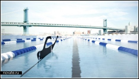 Плавающий бассейн в Нью-Йорке
