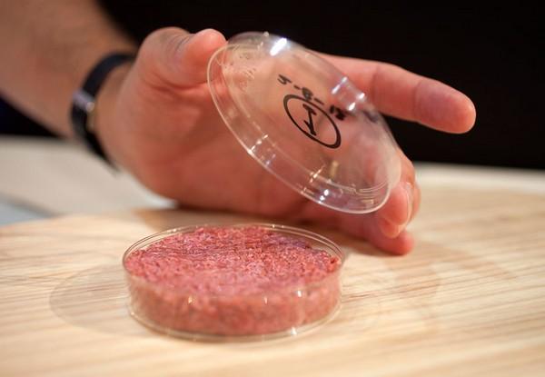 Выращено в пробирке: первый бургер из стволовых клеток