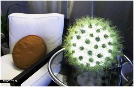 Светящийся шар: лампа-цветник