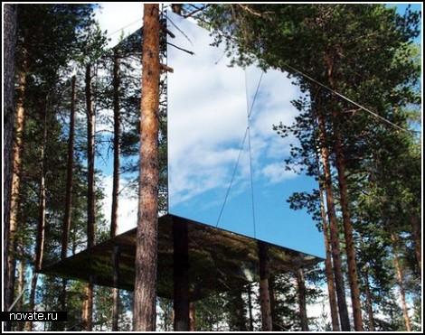 Отель среди деревьев: зеркало, гнездо, НЛО и прочие сумасшествия