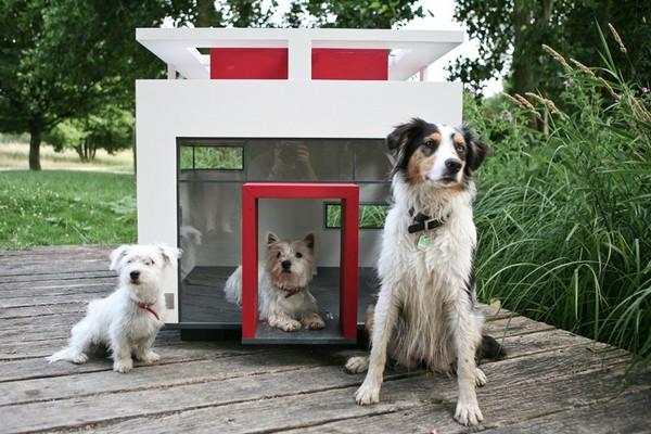 Cubix – собачья будка в стиле хай-тек