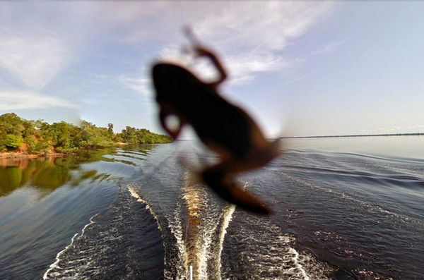 Джунгли Амазонии в Google Street View