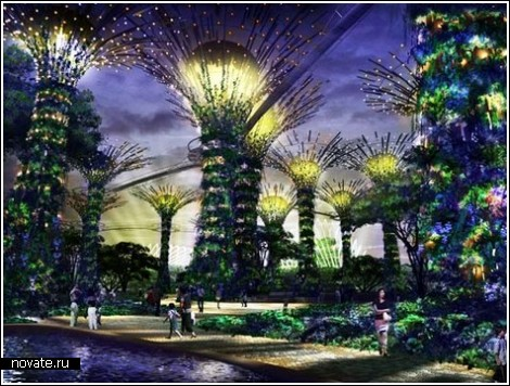 Современный ботанический сад в Сингапуре