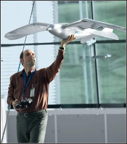 SmartBird: первая в мире искусственная птица