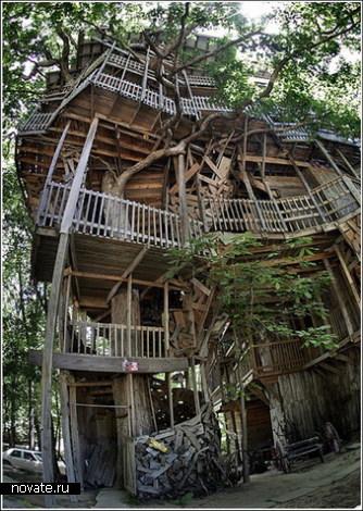 Самый большой в мире домик на дереве