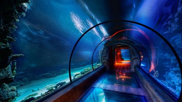 Подводные коридоры гостиницы Mandalay Bay