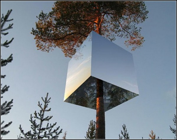 Зеркальный домик на дереве
