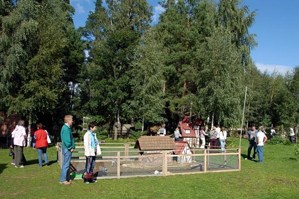 Латвийский курорт для кроликов