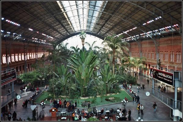 Испанские железнодорожные джунгли