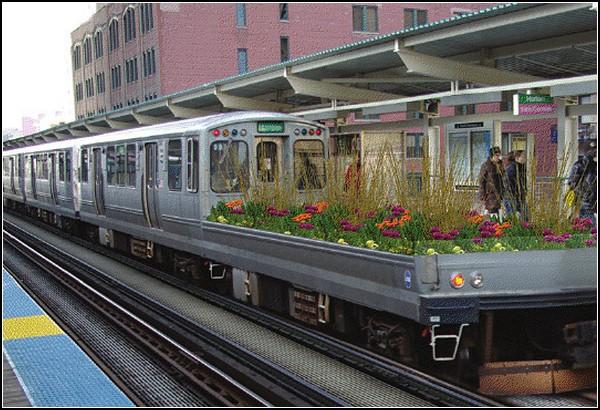Поезд-сад в Чикаго