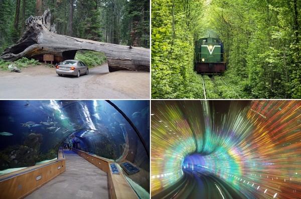 Самые необычные в мире тоннели