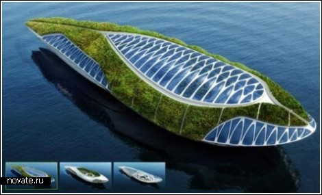 Остров-кит для чистки рек