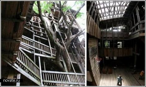 Современные  деревянные дома