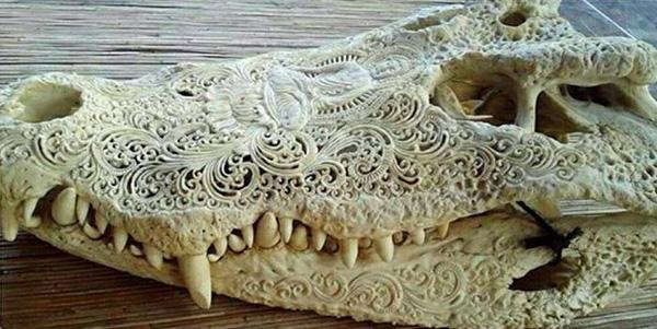 Череп крокодила тончайшей работы.